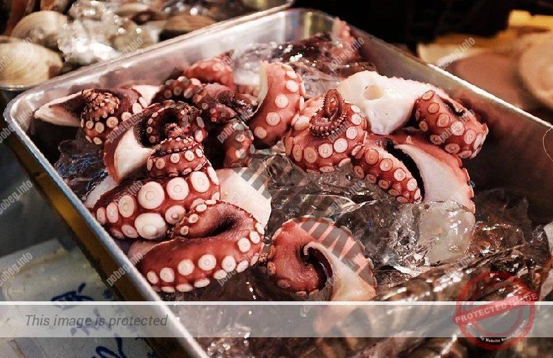 Кальмары на рынке в Японии